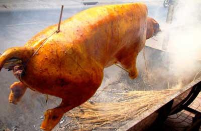 Chuyên cung cấp thịt bò tơ - bê thui củ chi nguyên con tươi sống, cung cap be thui bo to cu chi